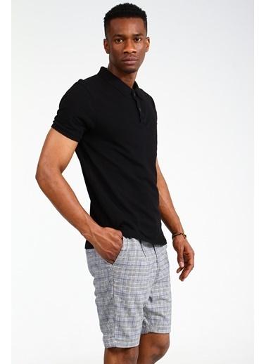 Collezione Siyah Polo Yaka Kısa Kollu Erkek Tshirt Siyah